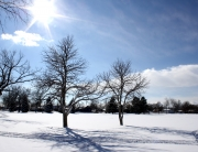 sunny-winter-day